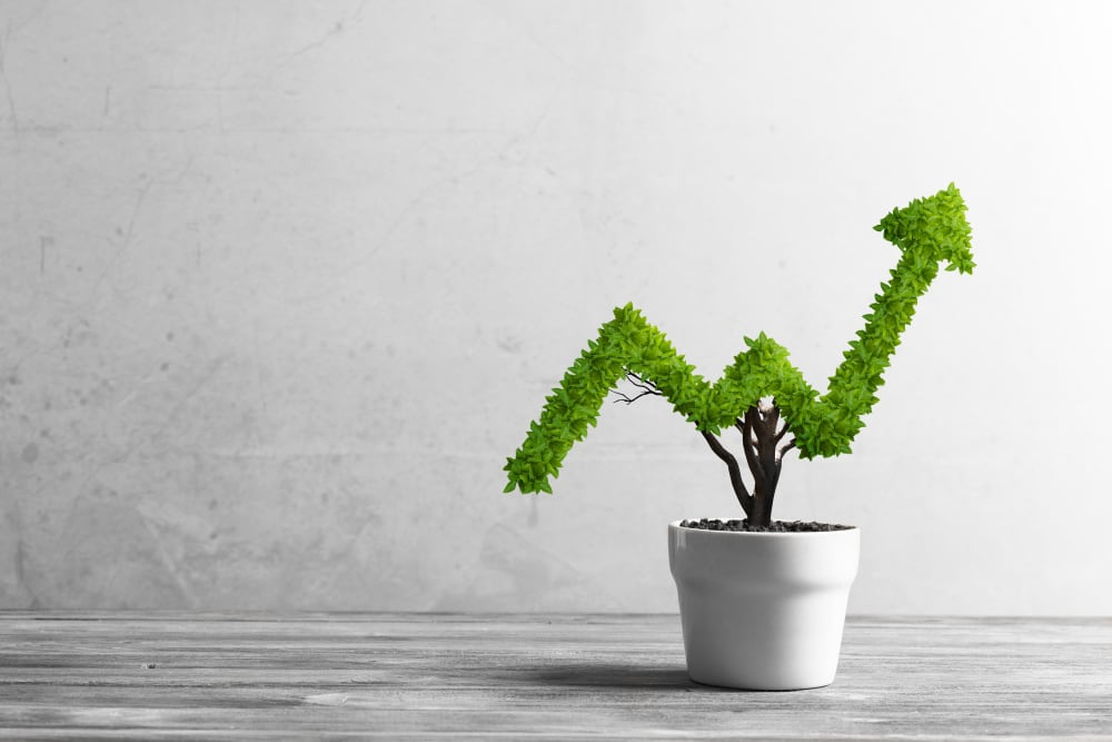 Why Every Business Needs Cash Flow Forecasting